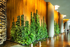 Hotel News- Rethinking Luxury Hotel Design to Connect Guests With Nature